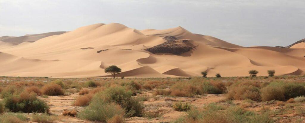 Sahara - nejkrásnější duny světa