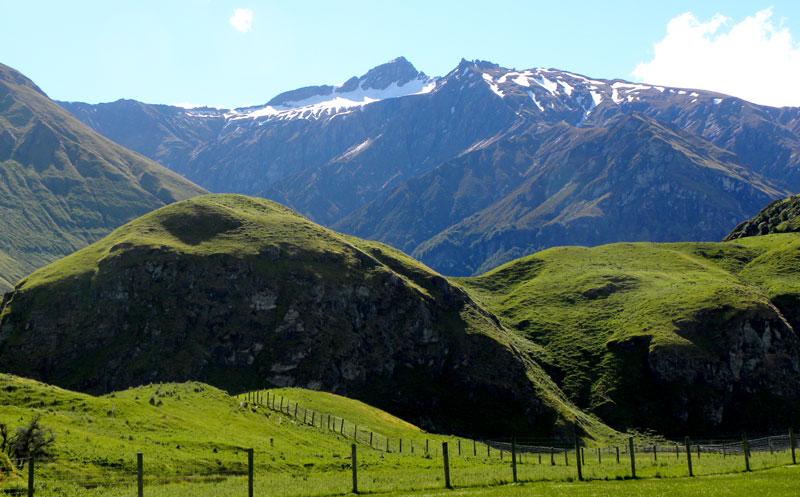typická zeleň na Novém Zélandu